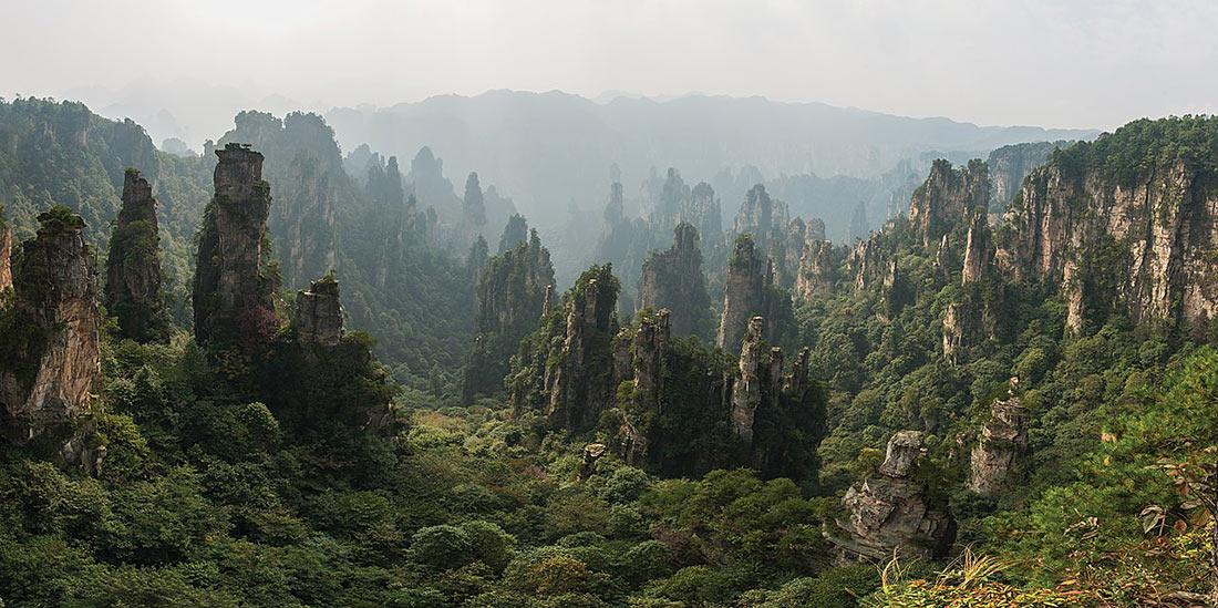 Тяньцзи